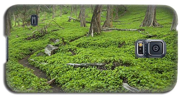 Trail Through Pololu Valley Galaxy S5 Case