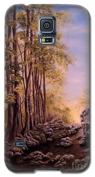 Galaxy S5 Case featuring the painting Trail To The Falls by Anna-maria Dickinson