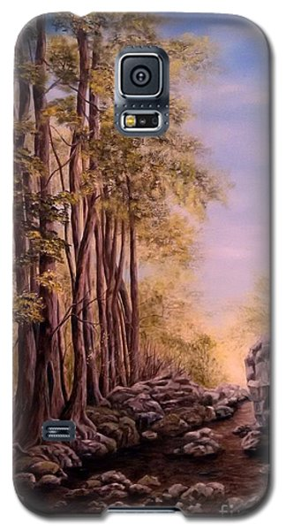 Trail To The Falls Galaxy S5 Case by Anna-maria Dickinson