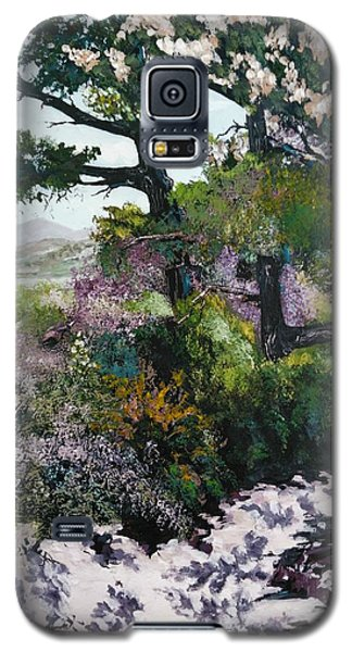 Trails Beauty Galaxy S5 Case