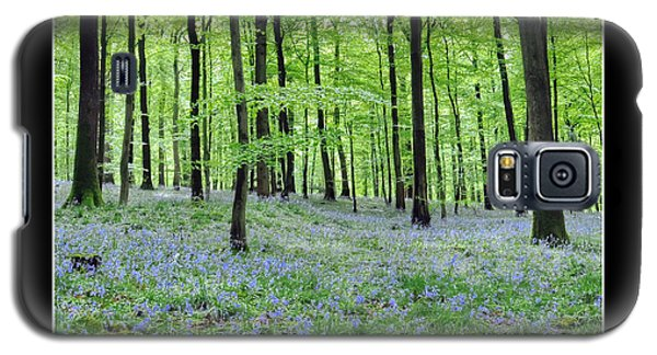 Tranquility - Bluebells In Woods Galaxy S5 Case