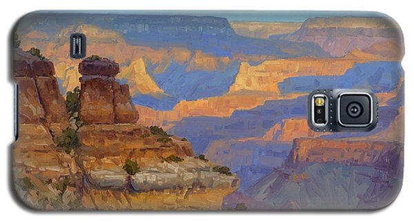 Grand Canyon Galaxy S5 Case - Transient Light by Cody DeLong