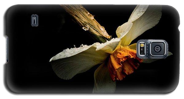 Transition Galaxy S5 Case