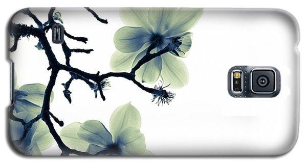Translucence Galaxy S5 Case by Melanie Alexandra Price