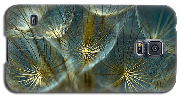 Galaxy S5 Case featuring the photograph Translucid Dandelions by Iris Greenwell