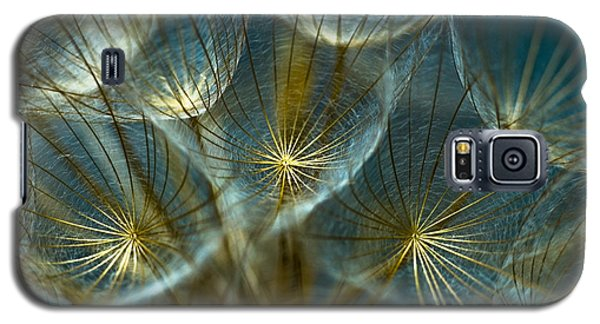 Translucid Dandelions Galaxy S5 Case by Iris Greenwell