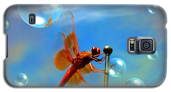 Transparent Red Dragonfly Galaxy S5 Case