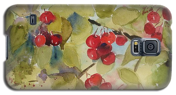 Traverse City Cherries Galaxy S5 Case