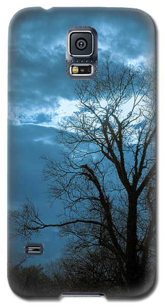 Tree # 23 Galaxy S5 Case