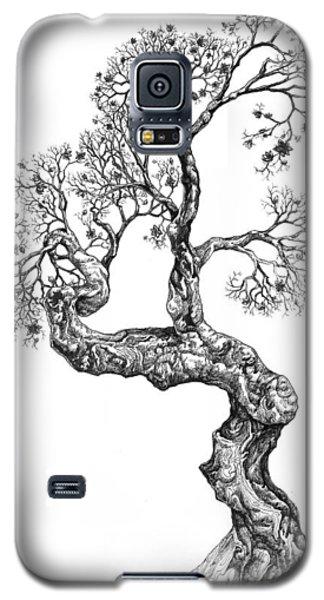 Tree 14 Galaxy S5 Case