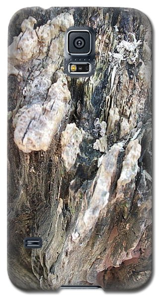 Galaxy S5 Case featuring the photograph Tree Abstract by Skyler Tipton