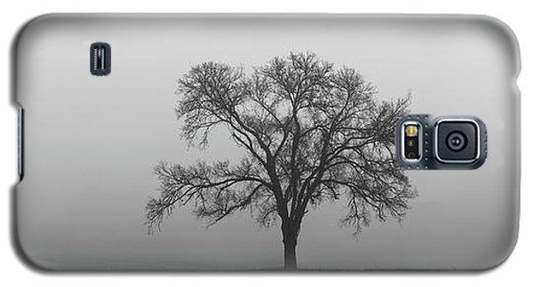 Tree Alone In The Fog Galaxy S5 Case