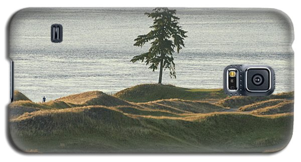Tree At Chambers Bay Galaxy S5 Case