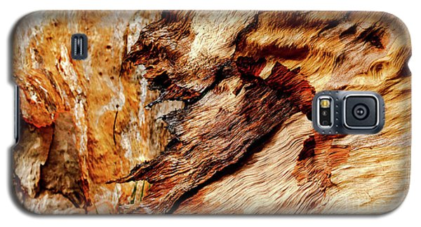 Tree Bark Series  - Patterns #2 Galaxy S5 Case by Lexa Harpell