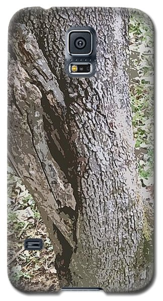 Tree Bark Galaxy S5 Case by Skyler Tipton