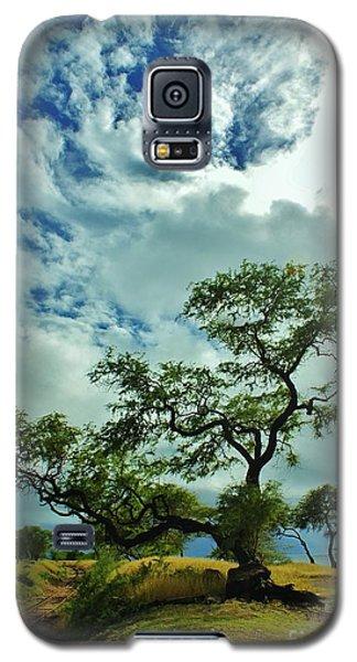 Tree Beside The Tracks Galaxy S5 Case