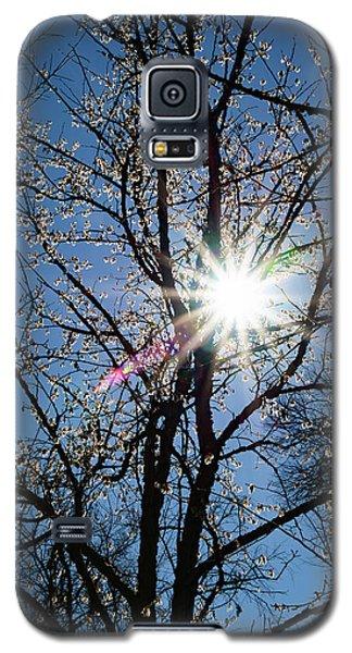 Tree Buds Galaxy S5 Case