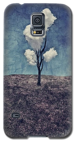 Galaxy S5 Case - Tree Clouds 01d2 by Aimelle