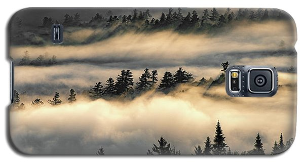 Trees In The Clouds Galaxy S5 Case