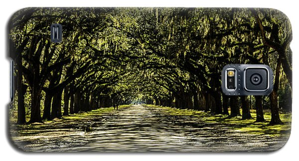 Tree Covered Approach Galaxy S5 Case