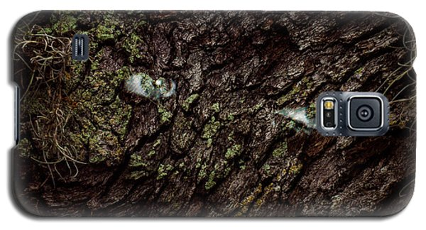 Galaxy S5 Case featuring the photograph Tree Eyes by Randy Sylvia