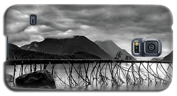 Tree Fall At Alouette Lake Galaxy S5 Case