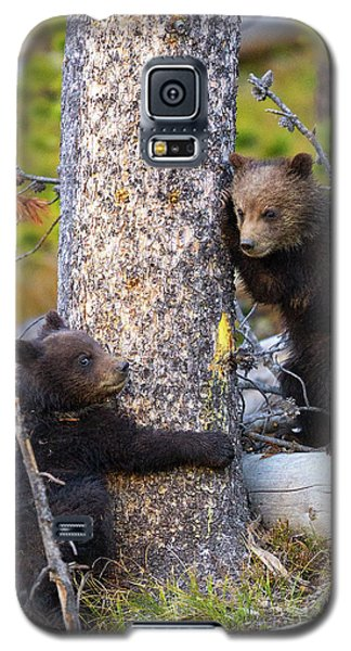 Tree Huggers Galaxy S5 Case by Aaron Whittemore