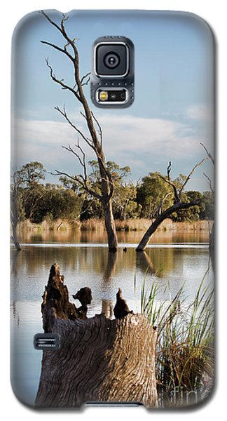 Galaxy S5 Case featuring the photograph Tree Image by Douglas Barnard
