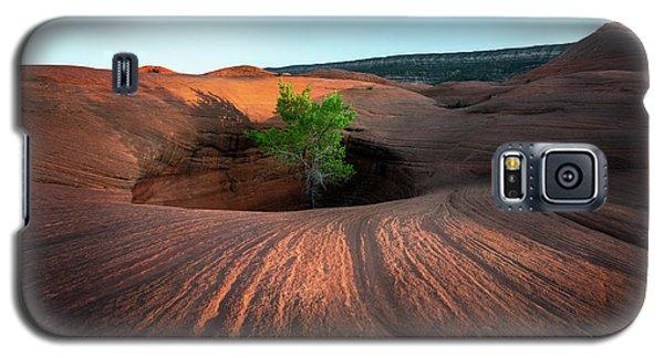 Tree In Desert Pothole Galaxy S5 Case