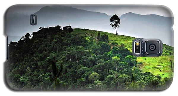 Tree In Kilimanjaro Galaxy S5 Case