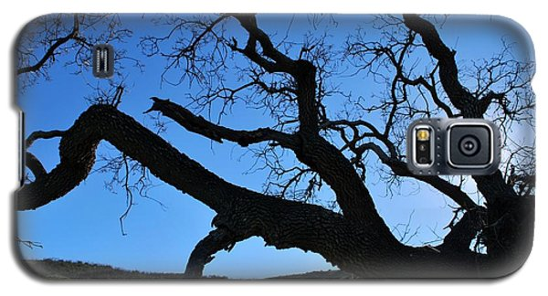 Tree In Rural Hills - Silhouette View Galaxy S5 Case