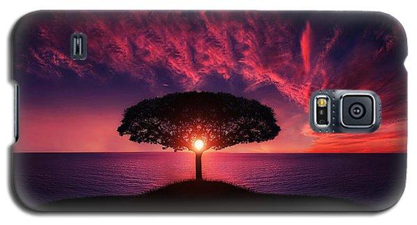 Tree In Sunset Galaxy S5 Case