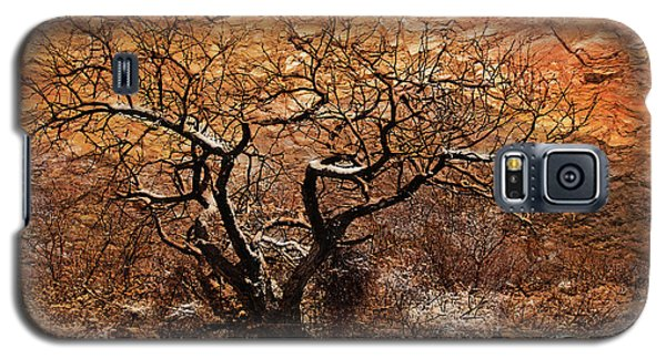 Tree In Winter Galaxy S5 Case