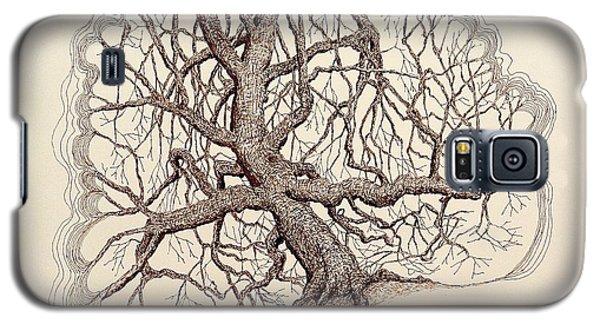 Tree In Winter II Galaxy S5 Case by Kerry Beverly
