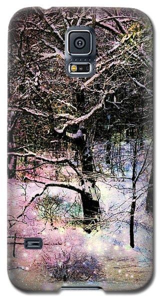 Tree In Winter Galaxy S5 Case by Robin Regan