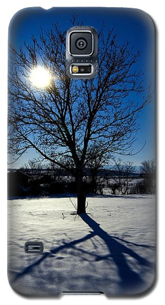Tree Into Sun On A Winter Snowy Afternoon Galaxy S5 Case