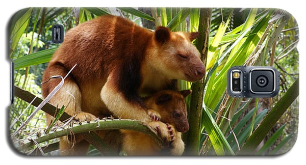 Tree Kangaroo 1 Galaxy S5 Case