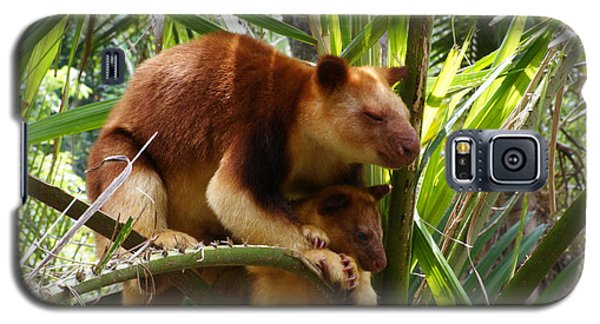 Tree Kangaroo 1 Galaxy S5 Case