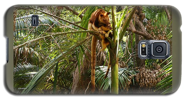 Tree Kangaroo 2 Galaxy S5 Case