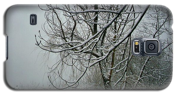 Tree Lace Three Galaxy S5 Case