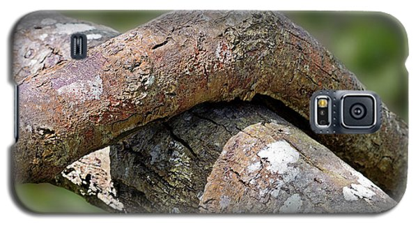Tree Legs Galaxy S5 Case