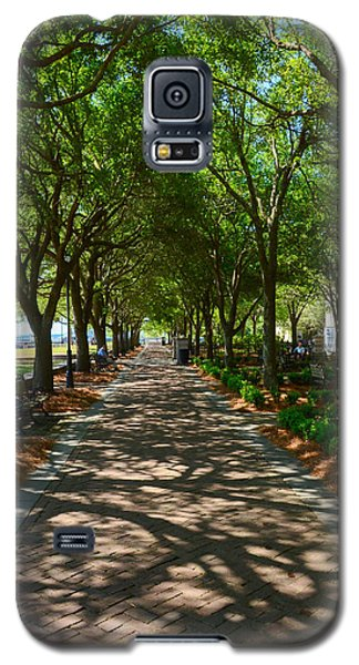 Tree Lined Path Galaxy S5 Case