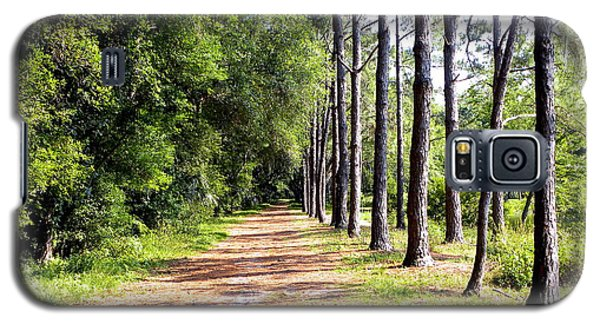 Tree Lined Path Galaxy S5 Case by Terri Mills