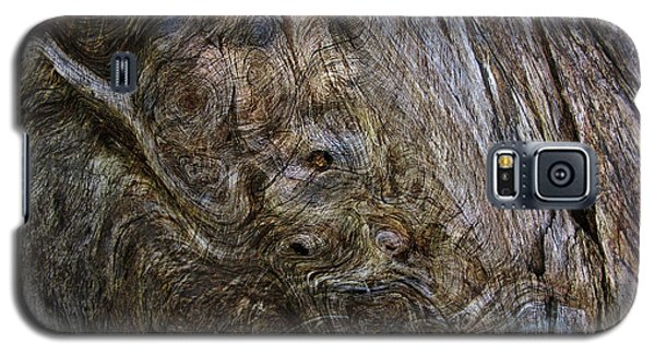 Galaxy S5 Case featuring the photograph Tree Memories # 19 by Ed Hall