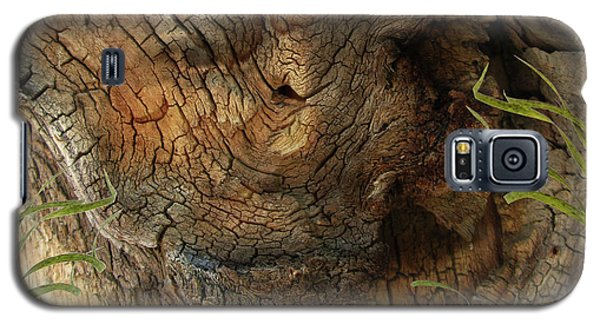 Galaxy S5 Case featuring the photograph Tree Memories # 22 by Ed Hall