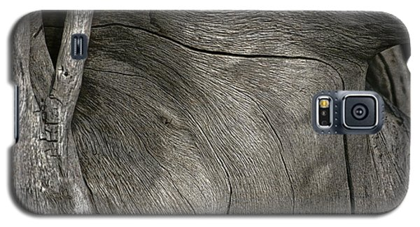 Galaxy S5 Case featuring the photograph Tree Memories # 26 by Ed Hall