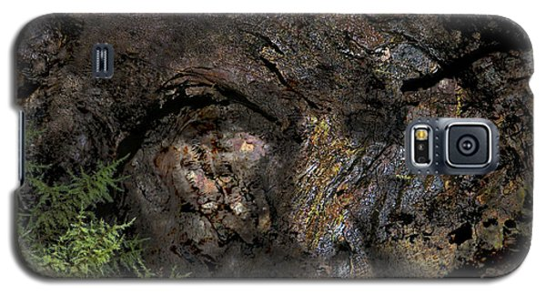 Galaxy S5 Case featuring the photograph Tree Memories # 27 by Ed Hall