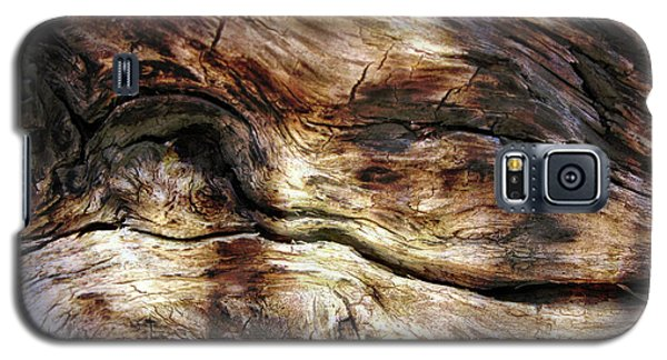 Galaxy S5 Case featuring the photograph Tree Memories # 30 by Ed Hall