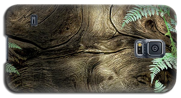Galaxy S5 Case featuring the photograph Tree Memories # 32 by Ed Hall