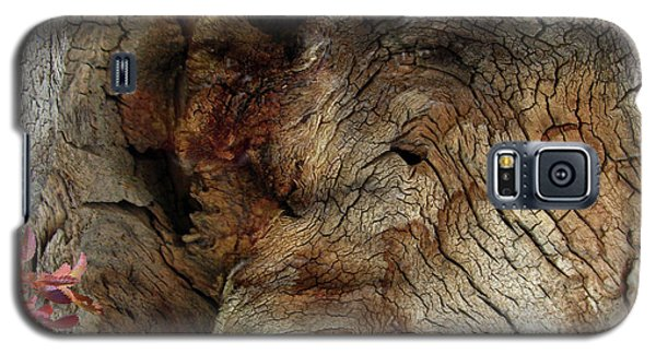 Galaxy S5 Case featuring the photograph Tree Memories # 34 by Ed Hall